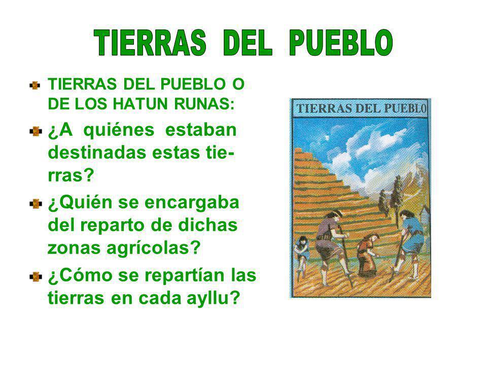 TIERRAS DEL PUEBLO O DE LOS HATUN RUNAS: ¿A quiénes estaban destinadas estas tie- rras? ¿Quién se encargaba del reparto de dichas zonas agrícolas? ¿Có
