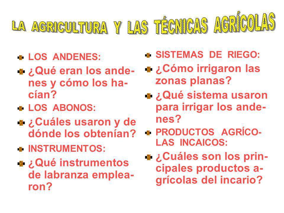 LOS ANDENES: ¿Qué eran los ande- nes y cómo los ha- cían? LOS ABONOS: ¿Cuáles usaron y de dónde los obtenían? INSTRUMENTOS: ¿Qué instrumentos de labra