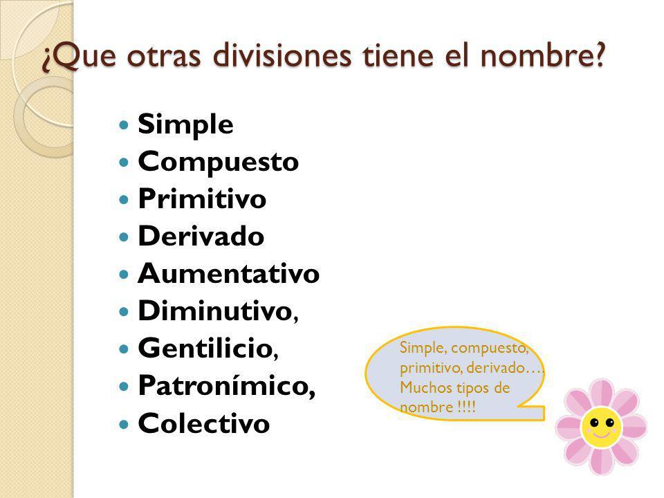 ¿Que otras divisiones tiene el nombre? Simple Compuesto Primitivo Derivado Aumentativo Diminutivo, Gentilicio, Patronímico, Colectivo Simple, compuest