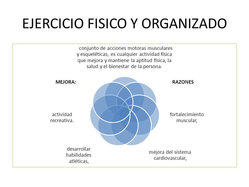 EJERCICIO FISICO Y ORGANIZADO conjunto de acciones motoras musculares y esqueléticas, es cualquier actividad física que mejora y mantiene la aptitud f