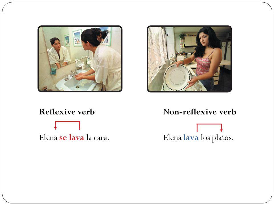 Reflexive verb Non-reflexive verb Elena se lava la cara.Elena lava los platos.