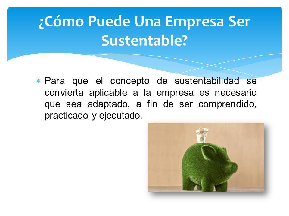 Para que el concepto de sustentabilidad se convierta aplicable a la empresa es necesario que sea adaptado, a fin de ser comprendido, practicado y ejecutado.