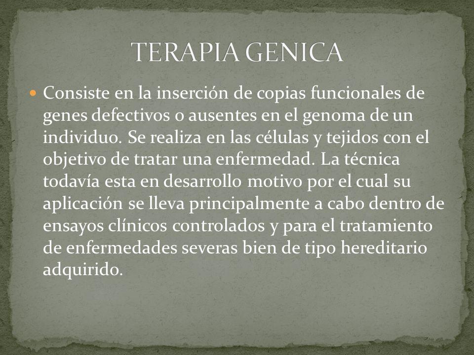 Consiste en la inserción de copias funcionales de genes defectivos o ausentes en el genoma de un individuo.