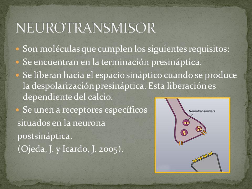 Son moléculas que cumplen los siguientes requisitos: Se encuentran en la terminación presináptica.