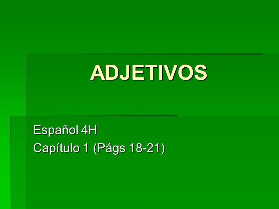 ADJETIVOS Español 4H Capítulo 1 (Págs 18-21)