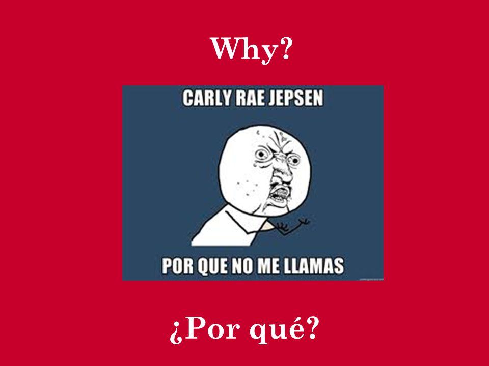 ¿Por qué? Why?
