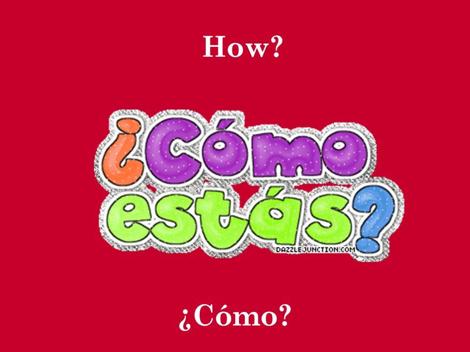 ¿Qué? can be followed by a noun, but ¿Cuál? cannot.