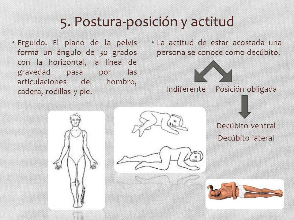 5. Postura-posición y actitud Erguido. El plano de la pelvis forma un ángulo de 30 grados con la horizontal, la línea de gravedad pasa por las articul
