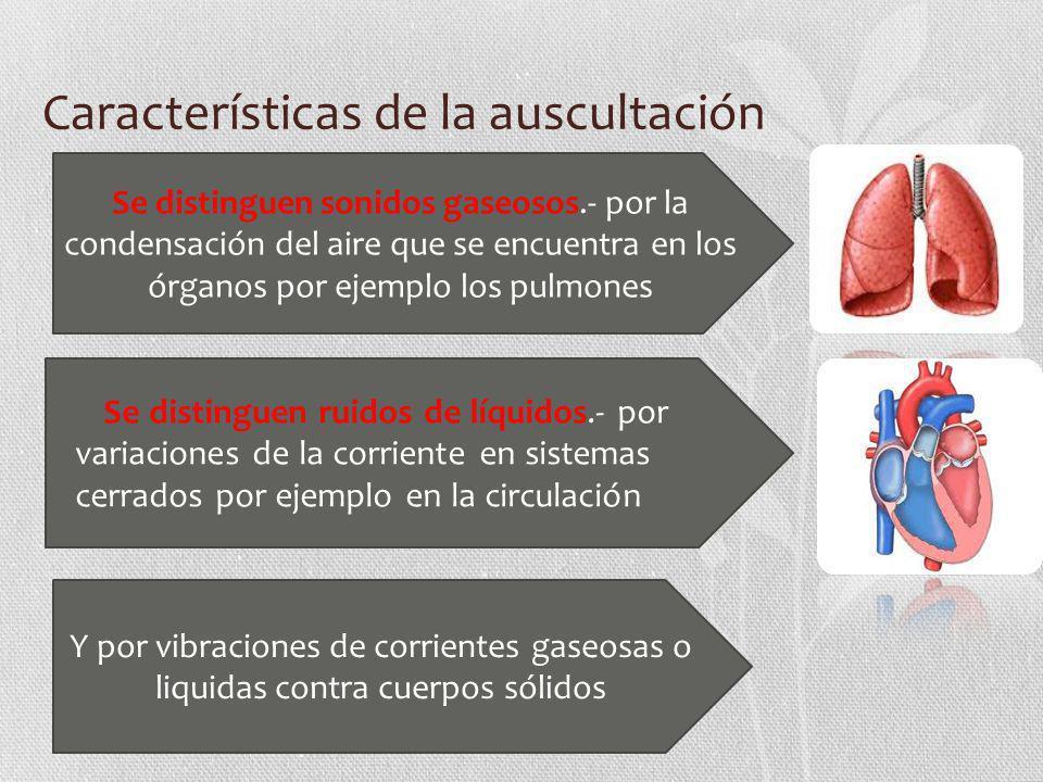 Características de la auscultación Se distinguen sonidos gaseosos.- por la condensación del aire que se encuentra en los órganos por ejemplo los pulmo