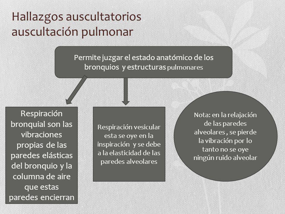 Hallazgos auscultatorios auscultación pulmonar Permite juzgar el estado anatómico de los bronquios y estructuras pulmonares Respiración bronquial son