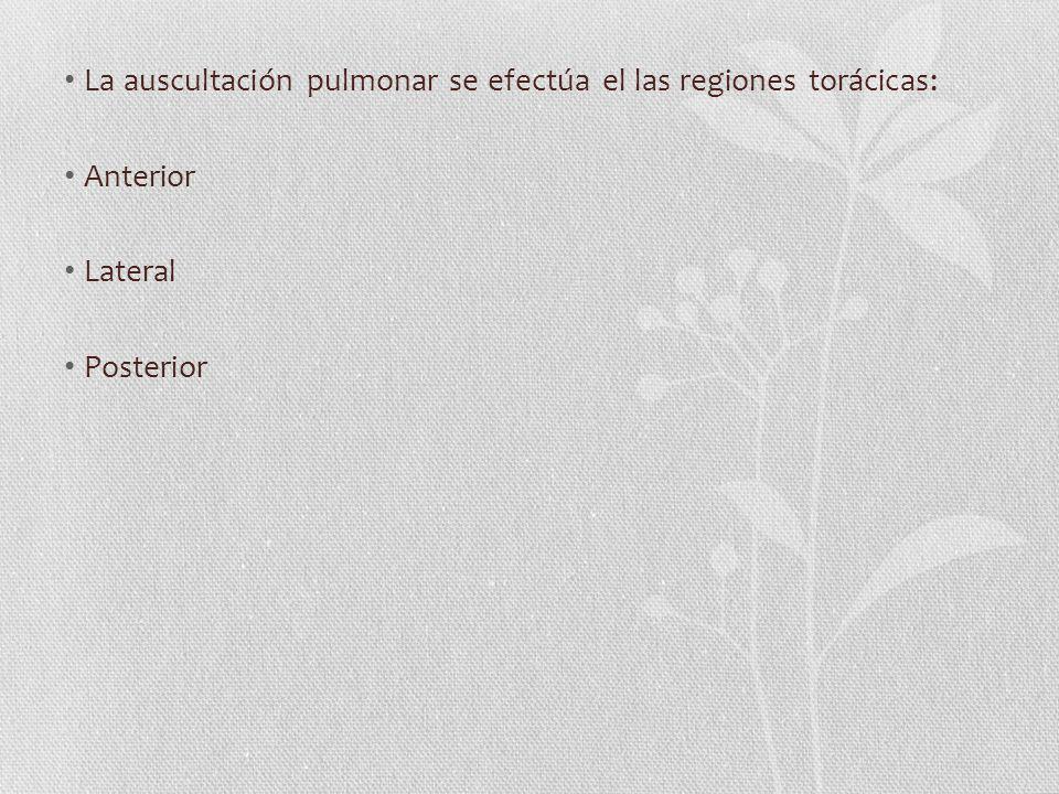 La auscultación pulmonar se efectúa el las regiones torácicas: Anterior Lateral Posterior