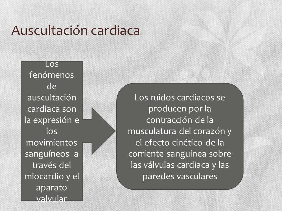 Auscultación cardiaca Los fenómenos de auscultación cardiaca son la expresión e los movimientos sanguíneos a través del miocardio y el aparato valvula