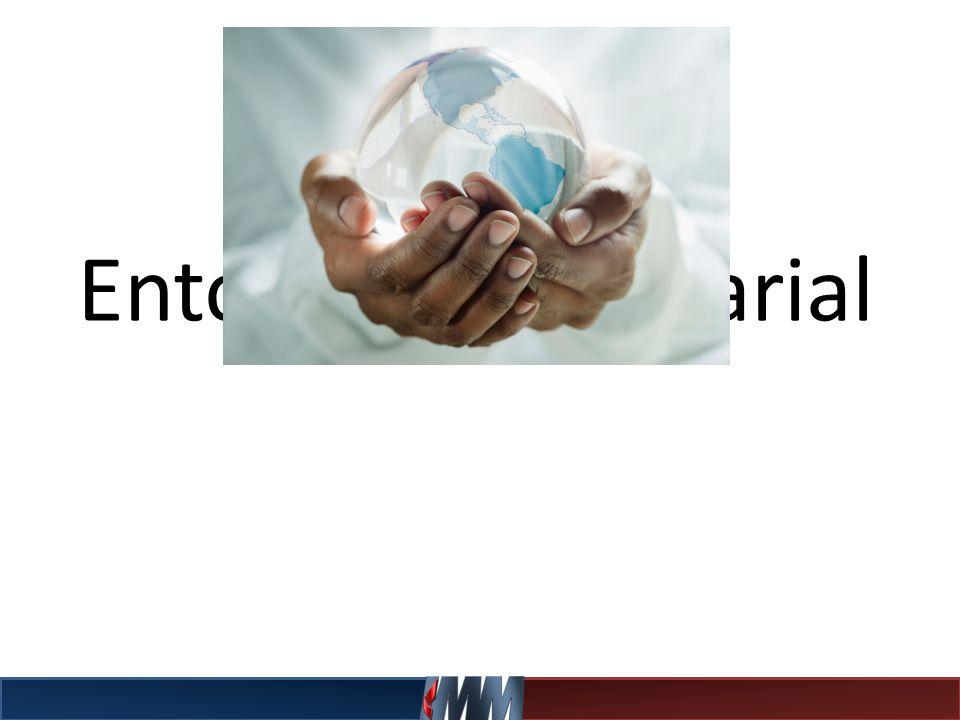 Empresa Global Toda empresa que opera como una transnacional, pero que ve toda la Tierra como mercado potencial y posible fuente de suministros, por lo que diseña sus estrategias tomando en cuenta el mundo entero.