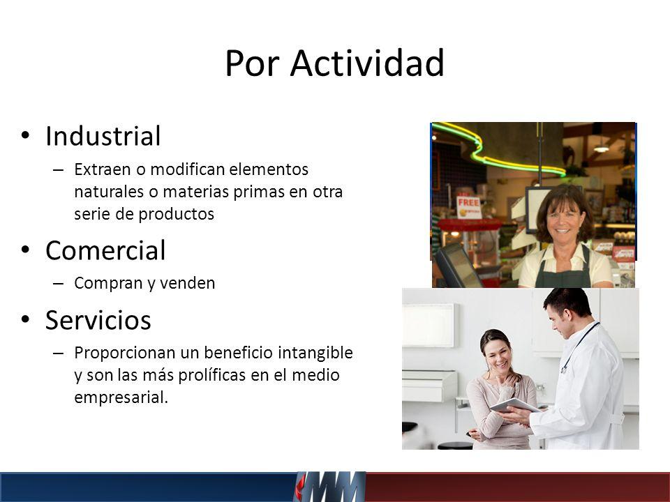 Por Actividad Industrial – Extraen o modifican elementos naturales o materias primas en otra serie de productos Comercial – Compran y venden Servicios