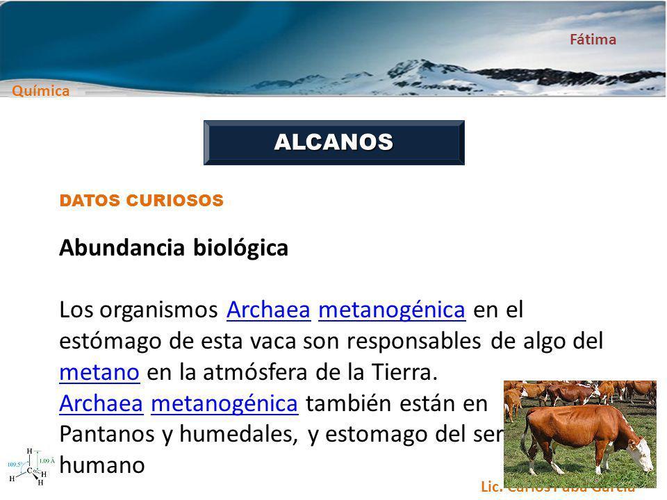 Química Fátima Lic. Carlos Paba García ALCANOS DATOS CURIOSOS Abundancia biológica Los organismos Archaea metanogénica en el estómago de esta vaca son