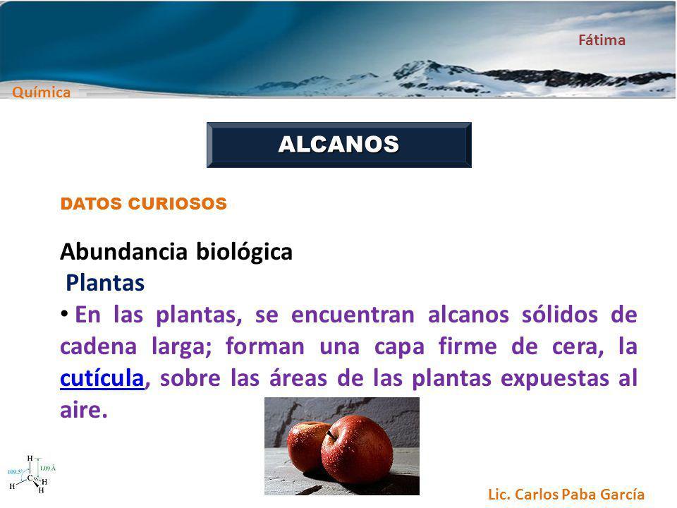 Química Fátima Lic. Carlos Paba García ALCANOS DATOS CURIOSOS Abundancia biológica Plantas En las plantas, se encuentran alcanos sólidos de cadena lar