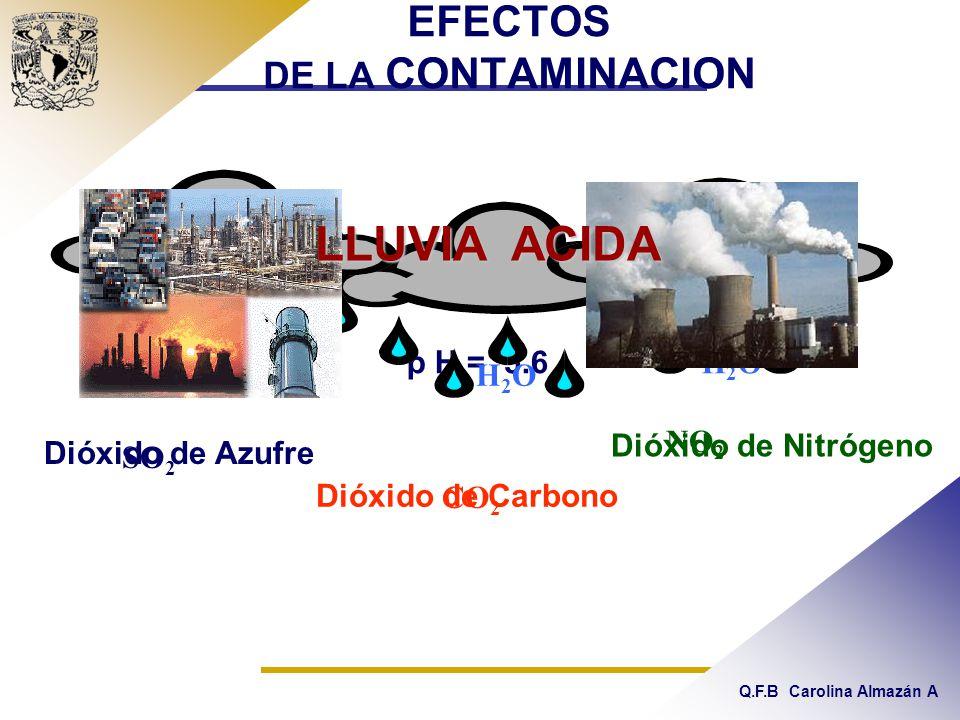 EFECTOS DE LA CONTAMINACION p H = 5.6 SO 2 CO 2 NO 2 H2OH2O H2OH2O H2OH2O Dióxido de Azufre Dióxido de Carbono Dióxido de Nitrógeno LLUVIA ACIDA