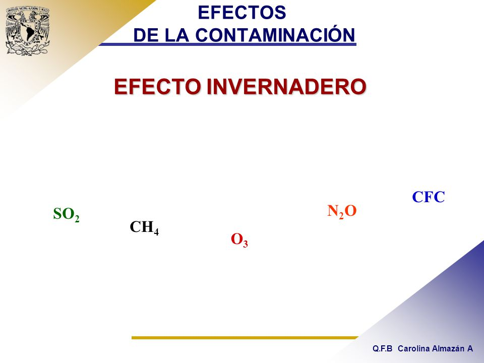 Q.F.B Carolina Almazán A EFECTOS DE LA CONTAMINACIÓN EFECTO INVERNADERO SO 2 O3O3 N2ON2O CH 4 CFC