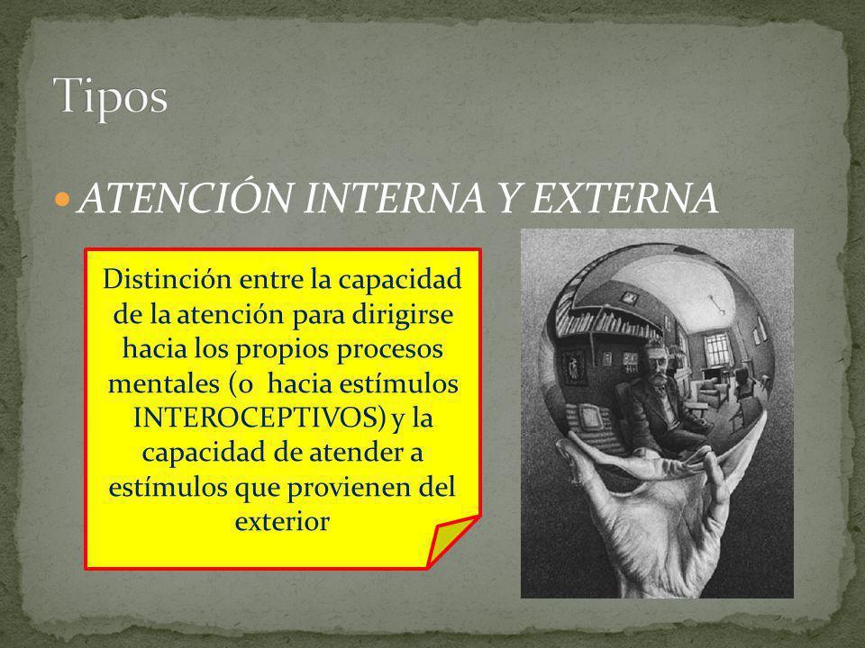 ATENCIÓN INTERNA Y EXTERNA Distinción entre la capacidad de la atención para dirigirse hacia los propios procesos mentales (o hacia estímulos INTEROCE