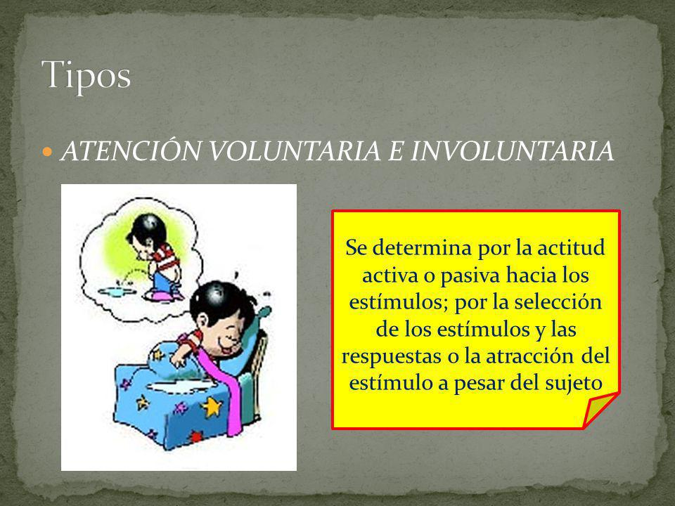 ATENCIÓN VOLUNTARIA E INVOLUNTARIA Se determina por la actitud activa o pasiva hacia los estímulos; por la selección de los estímulos y las respuestas o la atracción del estímulo a pesar del sujeto