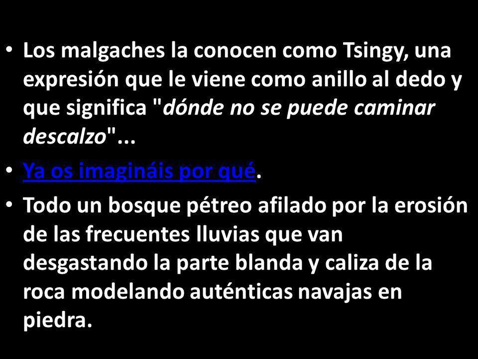 Los malgaches la conocen como Tsingy, una expresión que le viene como anillo al dedo y que significa