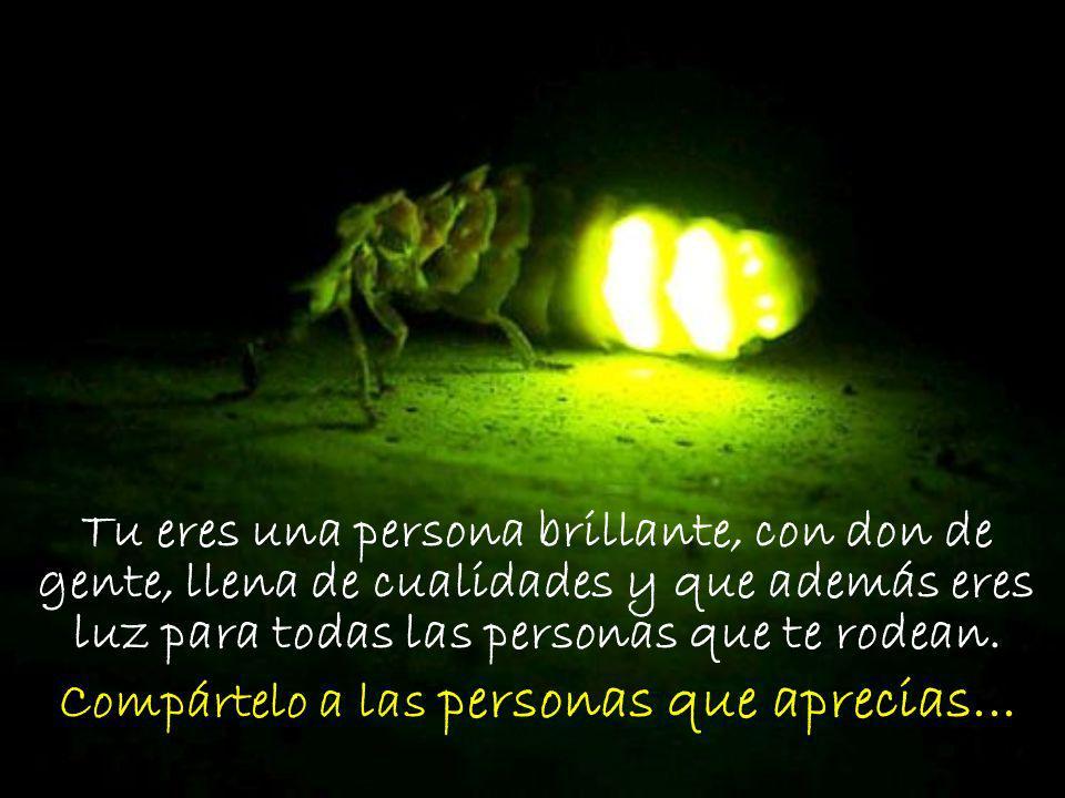 Tu eres una persona brillante, con don de gente, llena de cualidades y que además eres luz para todas las personas que te rodean. Compártelo a las per