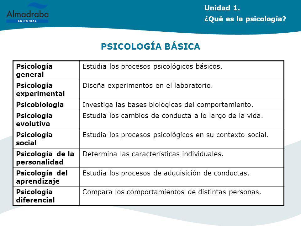PSICOLOGÍA BÁSICA Psicología general Estudia los procesos psicológicos básicos. Psicología experimental Diseña experimentos en el laboratorio. Psicobi