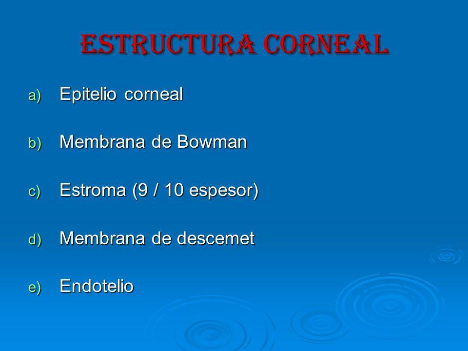 ESTRUCTURA CORNEAL a) Epitelio corneal b) Membrana de Bowman c) Estroma (9 / 10 espesor) d) Membrana de descemet e) Endotelio