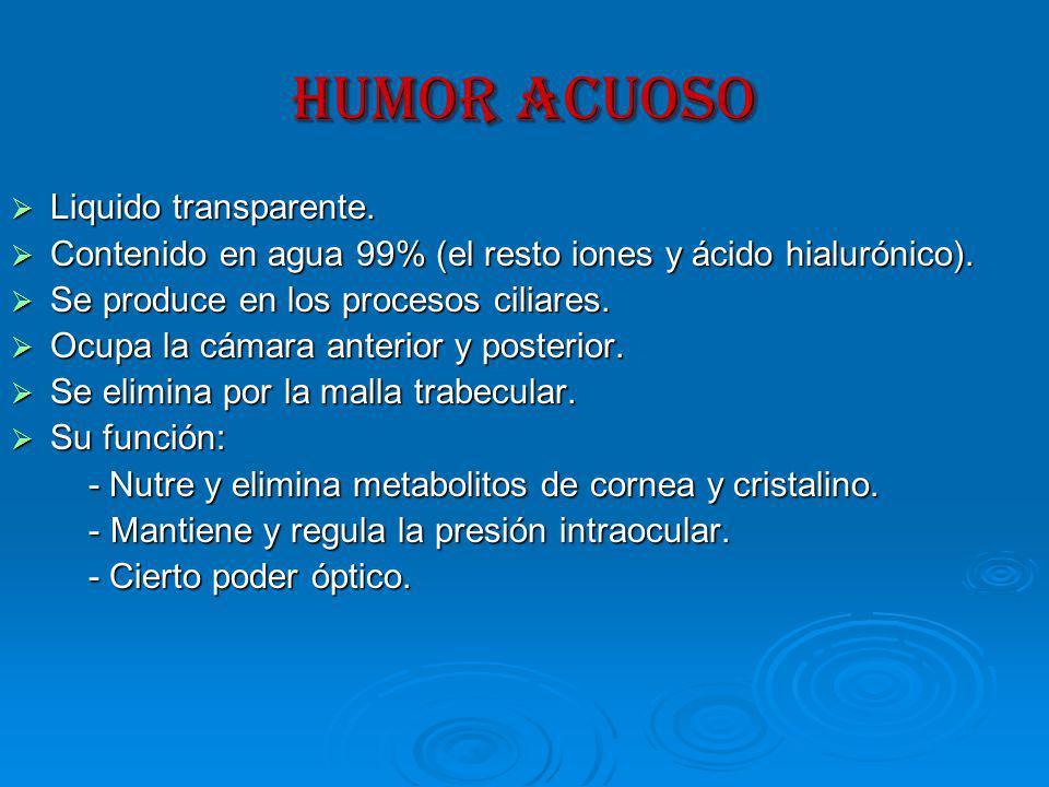 HUMOR ACUOSO Liquido transparente.Liquido transparente.