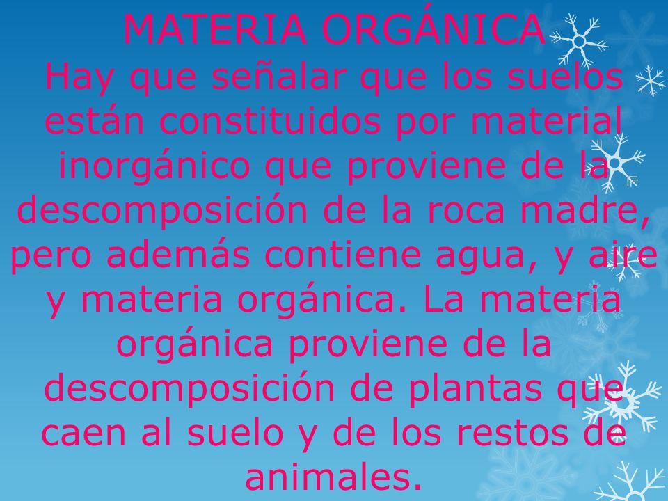 MATERIA ORGÁNICA Hay que señalar que los suelos están constituidos por material inorgánico que proviene de la descomposición de la roca madre, pero además contiene agua, y aire y materia orgánica.