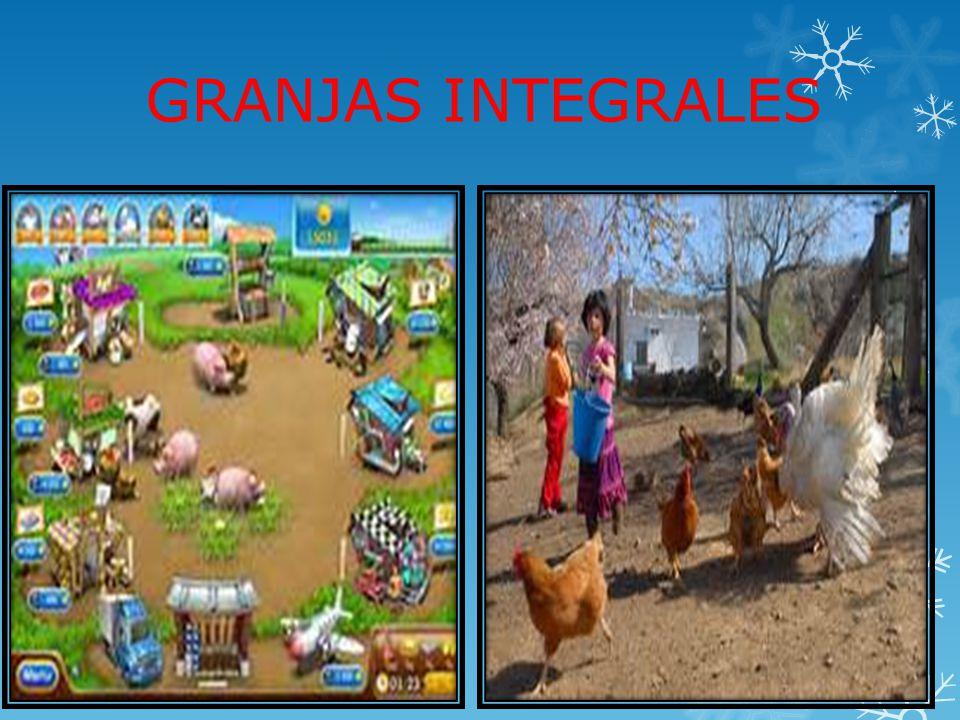 GRANJAS INTEGRALES