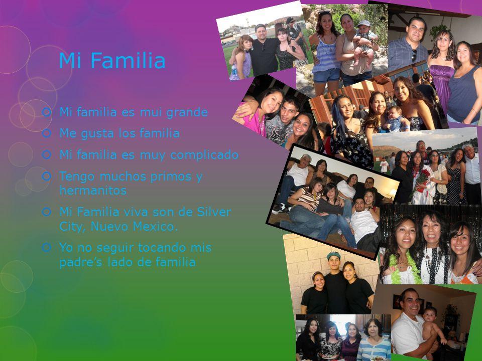 Mi Familia Mi familia es mui grande Me gusta los familia Mi familia es muy complicado Tengo muchos primos y hermanitos Mi Familia viva son de Silver C