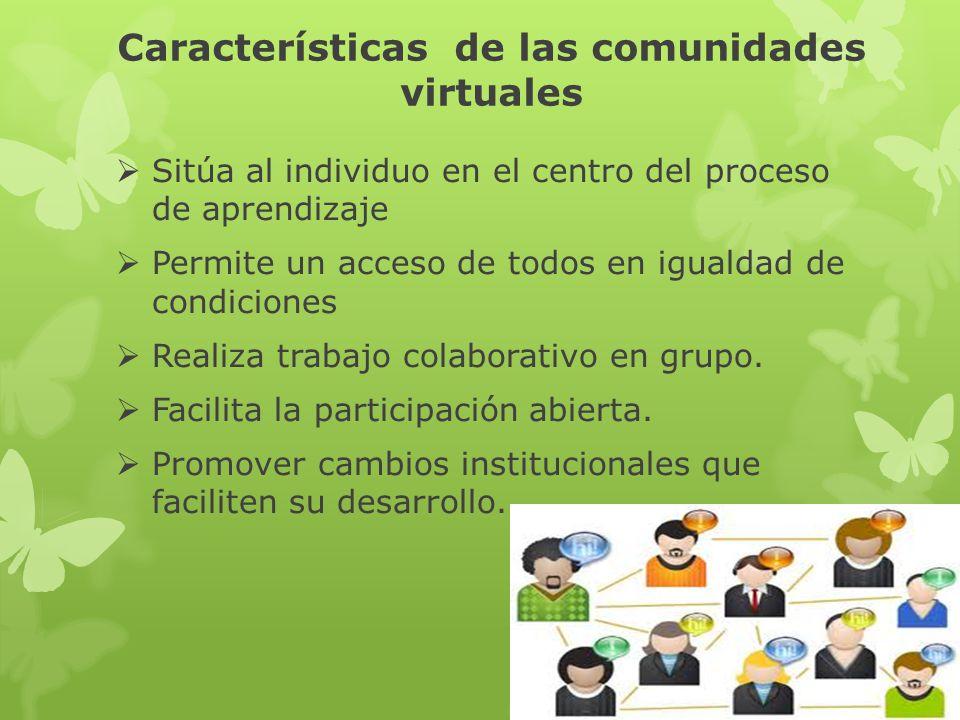 Características de las comunidades virtuales Sitúa al individuo en el centro del proceso de aprendizaje Permite un acceso de todos en igualdad de cond