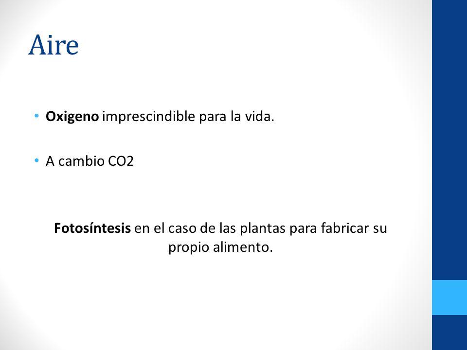 Aire Oxigeno imprescindible para la vida. A cambio CO2 Fotosíntesis en el caso de las plantas para fabricar su propio alimento.