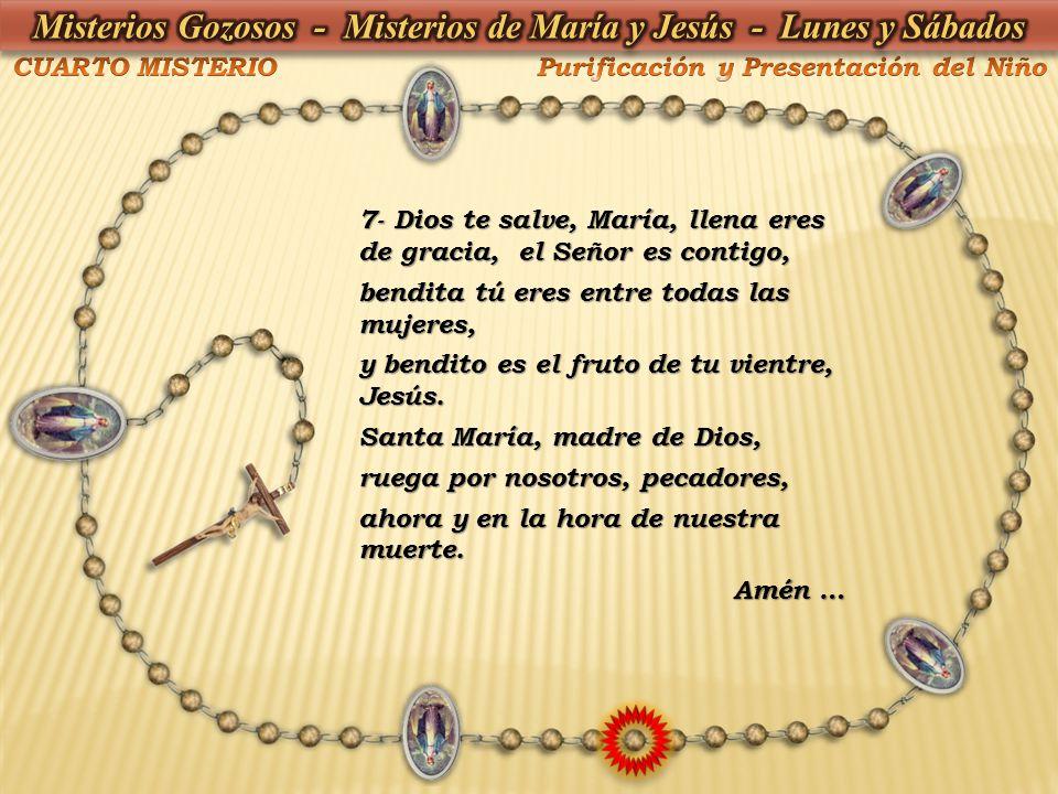 7- Dios te salve, María, llena eres de gracia, el Señor es contigo, bendita tú eres entre todas las mujeres, y bendito es el fruto de tu vientre, Jesú