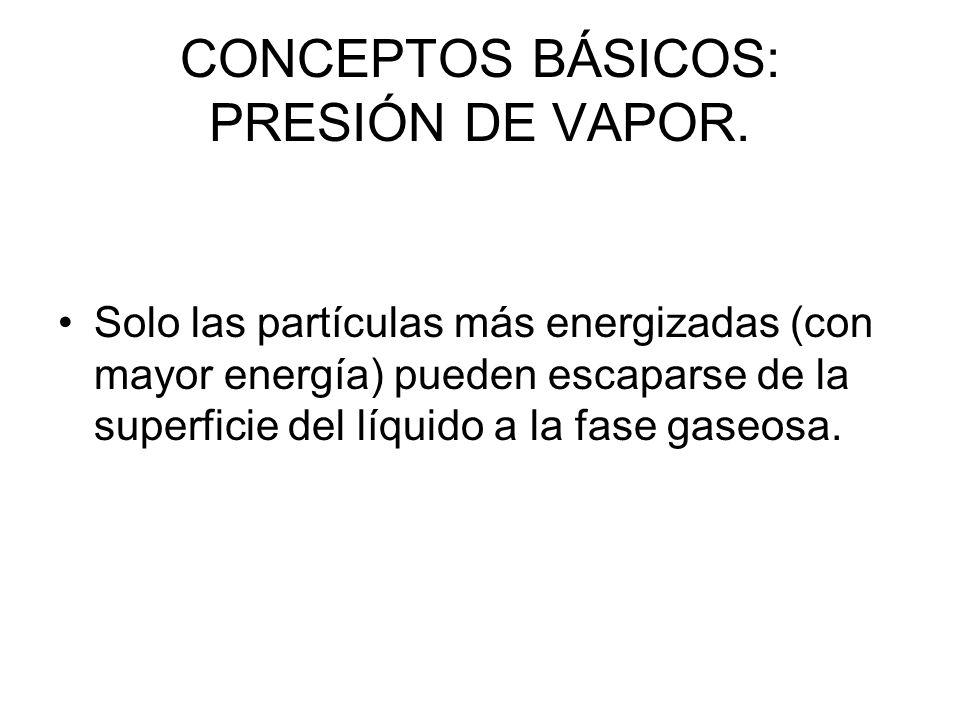 CONCEPTOS BÁSICOS: PRESIÓN DE VAPOR.