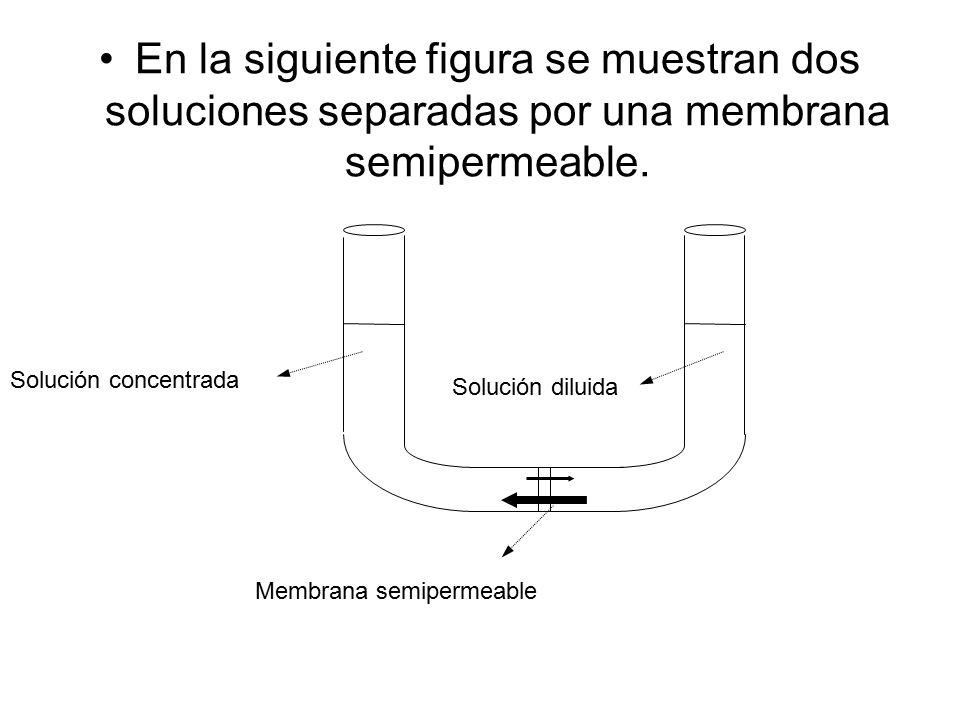 En la siguiente figura se muestran dos soluciones separadas por una membrana semipermeable.