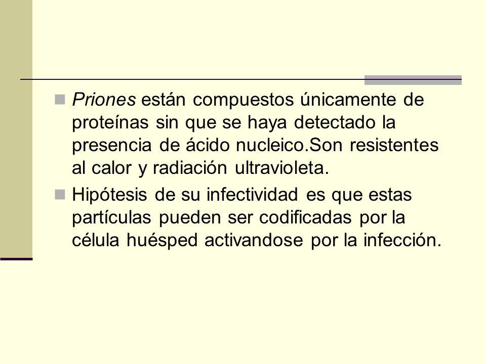 Viroides y Priones son agentes infecciosos más pequeños que los virus. Viroides están compuestos únicamente de ácido nucleico, esta plegado fuertement