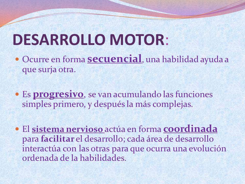 DESARROLLO MOTOR: Ocurre en forma secuencial, una habilidad ayuda a que surja otra. Es progresivo, se van acumulando las funciones simples primero, y