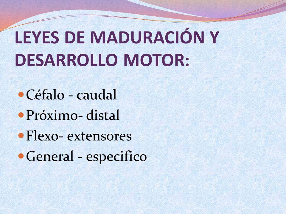 LEYES DE MADURACIÓN Y DESARROLLO MOTOR : Céfalo - caudal Próximo- distal Flexo- extensores General - especifico