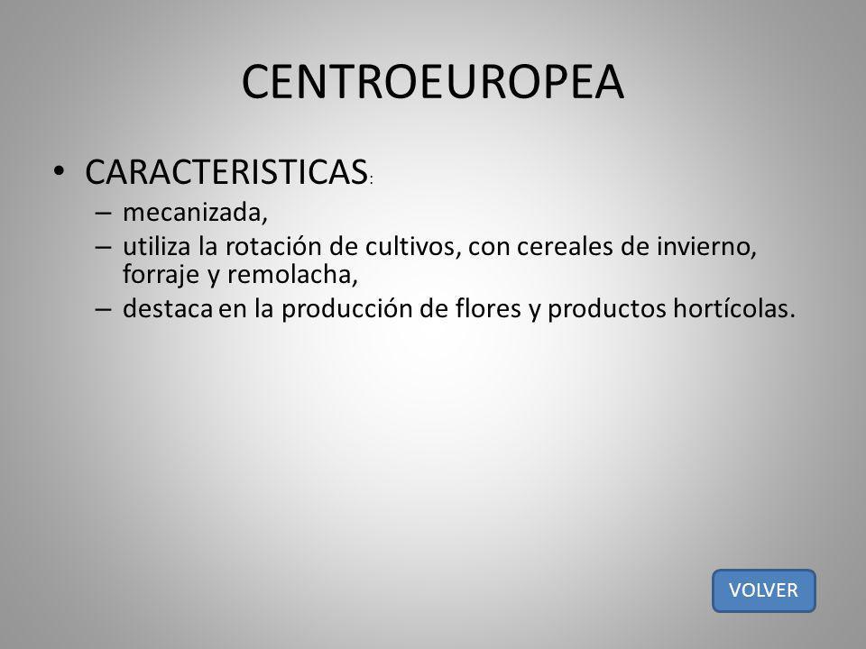 CENTROEUROPEA CARACTERISTICAS : – mecanizada, – utiliza la rotación de cultivos, con cereales de invierno, forraje y remolacha, – destaca en la produc