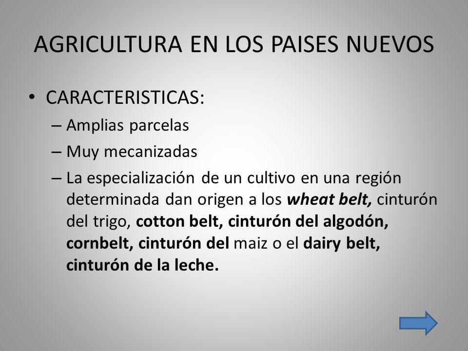 AGRICULTURA EN LOS PAISES NUEVOS CARACTERISTICAS: – Amplias parcelas – Muy mecanizadas – La especialización de un cultivo en una región determinada da