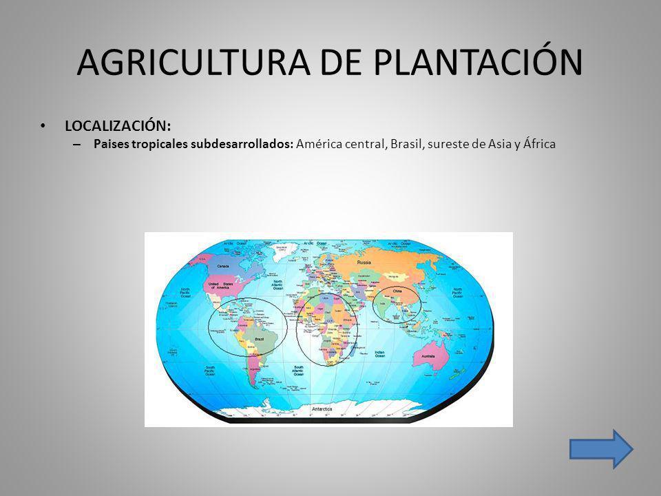 AGRICULTURA DE PLANTACIÓN LOCALIZACIÓN: – Paises tropicales subdesarrollados: América central, Brasil, sureste de Asia y África