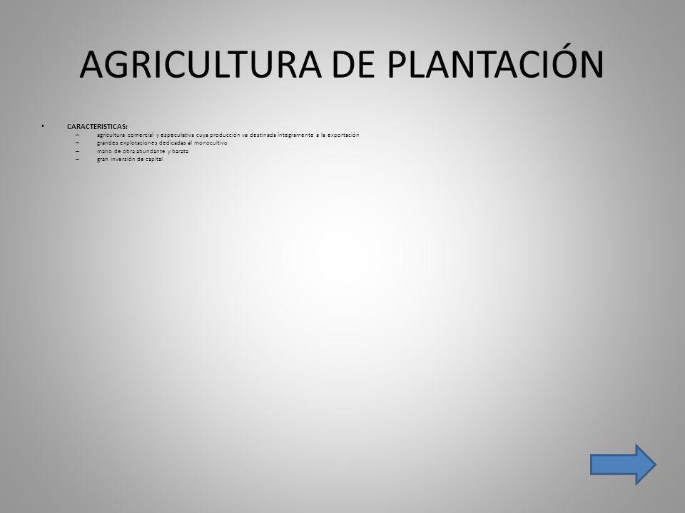 AGRICULTURA DE PLANTACIÓN CARACTERISTICAS: – agricultura comercial y especulativa cuya producción va destinada íntegramente a la exportación – grandes