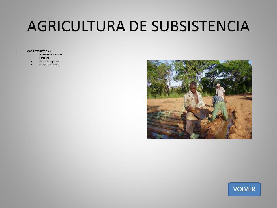 AGRICULTURA DE SUBSISTENCIA CARACTERISTICAS: – mecanización escasa – barbecho – abonado orgánico – baja productividad. VOLVER