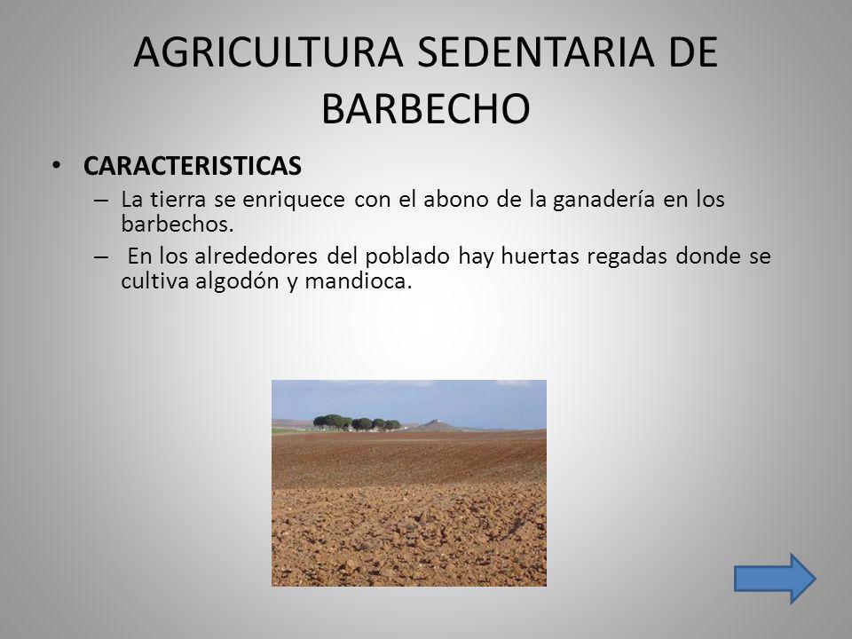 AGRICULTURA SEDENTARIA DE BARBECHO CARACTERISTICAS – La tierra se enriquece con el abono de la ganadería en los barbechos. – En los alrededores del po