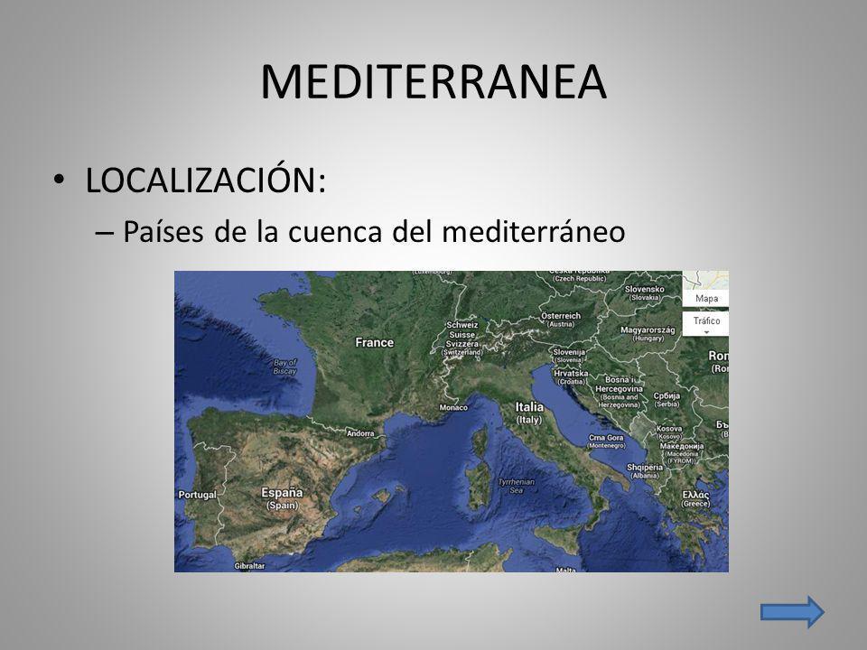 MEDITERRANEA LOCALIZACIÓN: – Países de la cuenca del mediterráneo