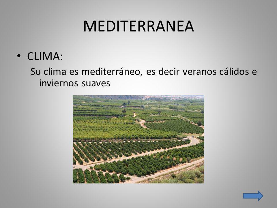 MEDITERRANEA CLIMA: Su clima es mediterráneo, es decir veranos cálidos e inviernos suaves
