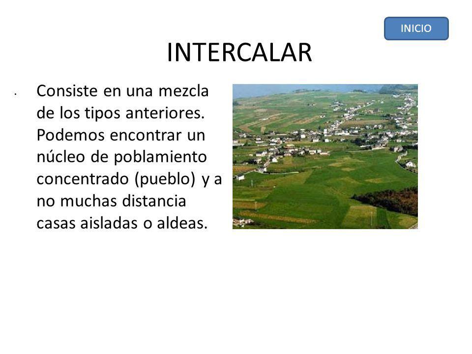 INTERCALAR.Consiste en una mezcla de los tipos anteriores.