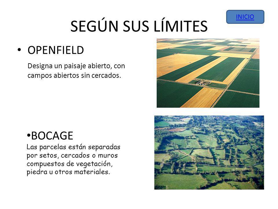 SEGÚN SUS LÍMITES OPENFIELD Designa un paisaje abierto, con campos abiertos sin cercados.